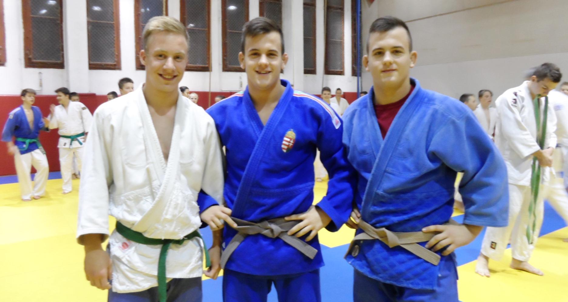 Balról jobbra: I. kép: Lepés Imre: amatőr, Holló Dani: O.B. VII., Holló László: O.B.II.